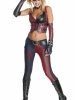 Batman Arkham City Secret Wishes Harley Quinn Costume
