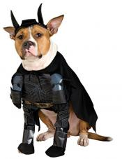 Batman Dog Costume Rubies