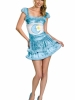 Care Bears Sassy Bedtime Bear Adult Costume Disguise