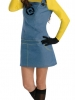 Despicable Me 2 Lady Minion Costume