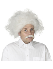 Einstein Wig Adult Fun World