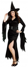 Gothic Witch Adult Plus Costume Fun World