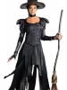 Oz The Great And Poweful Deluxe Wicked Witch of the West Costume