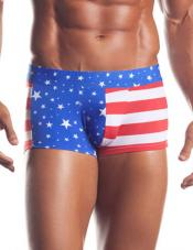 Patriot Theme Brief