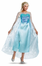 Plus Size Disney Frozen Elsa Costume