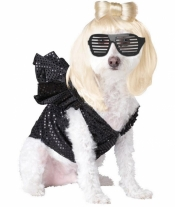 Pop Sensation Pet Costume California Costume