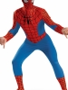 Spider - Man Deluxe Plus Adult Costume Disguise