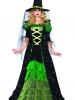 Storybook Witch Costume Leg Avenue