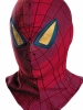 The Amazing Spider-Man Movie Adult Mask Costume Disguise