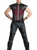 The Avengers Hawkeye Deluxe Adult Costume Disguise