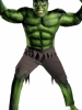 The Avengers Hulk Muscle Adult Costume Disguise