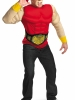 TNA Impact Wrestling Hulk Hogan Muscle Adult Costume Disguise