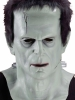 Universal Monster Collector's Edition Frankenstein Adult Mask Costume