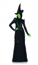 Wicked Deluxe Defying Gravity Elphaba Costume
