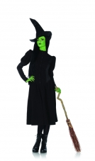 Wicked Elphaba Witch Costume