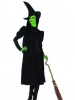 Wicked Elphaba Witch Costume Leg Avenue
